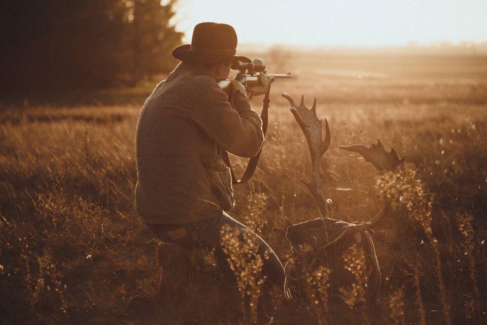vadászat vörösalma